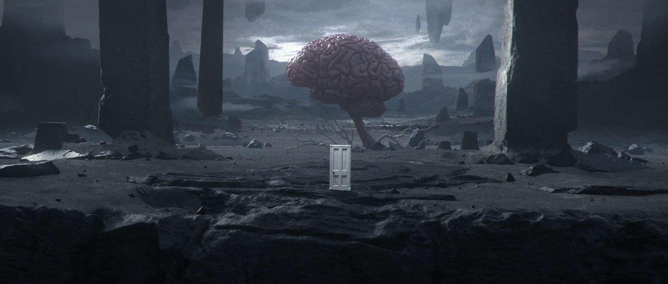 brainscape_precomp_001