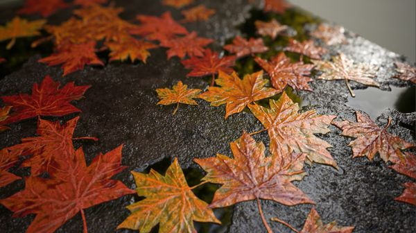 Creating a Procedural Autumn Leaf Covered Floor in Substance Designer